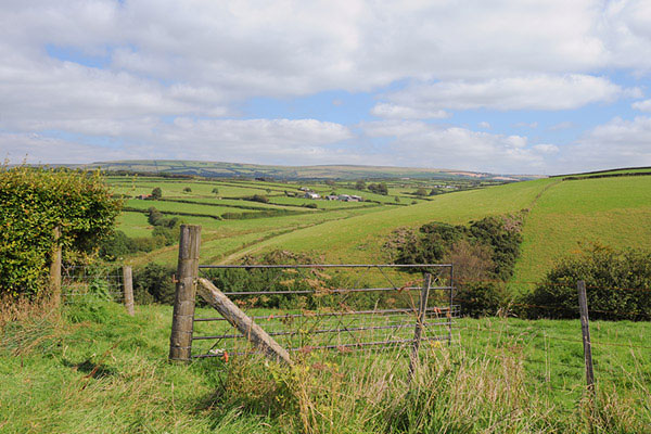 Farm Sales and Lettings